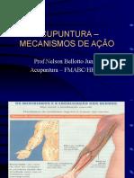 acupunturamecanismosdeao-140321093540-phpapp02