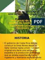Presentación del Banano en Costa Rica