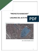 PROYECTO GEOPORTAL_RUNACHAY