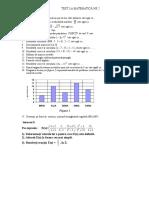 teza VIII2.doc