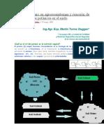 Ciclo Del Potasio en Agroecosistemas y Reacción de Los Fertilizantes Potásicos en El Suelo