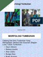 2) Morfologi Daun 10Sept2015