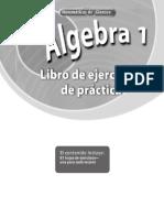 Algebra 1 Practica Spanish