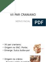 VII - Nervo Facial