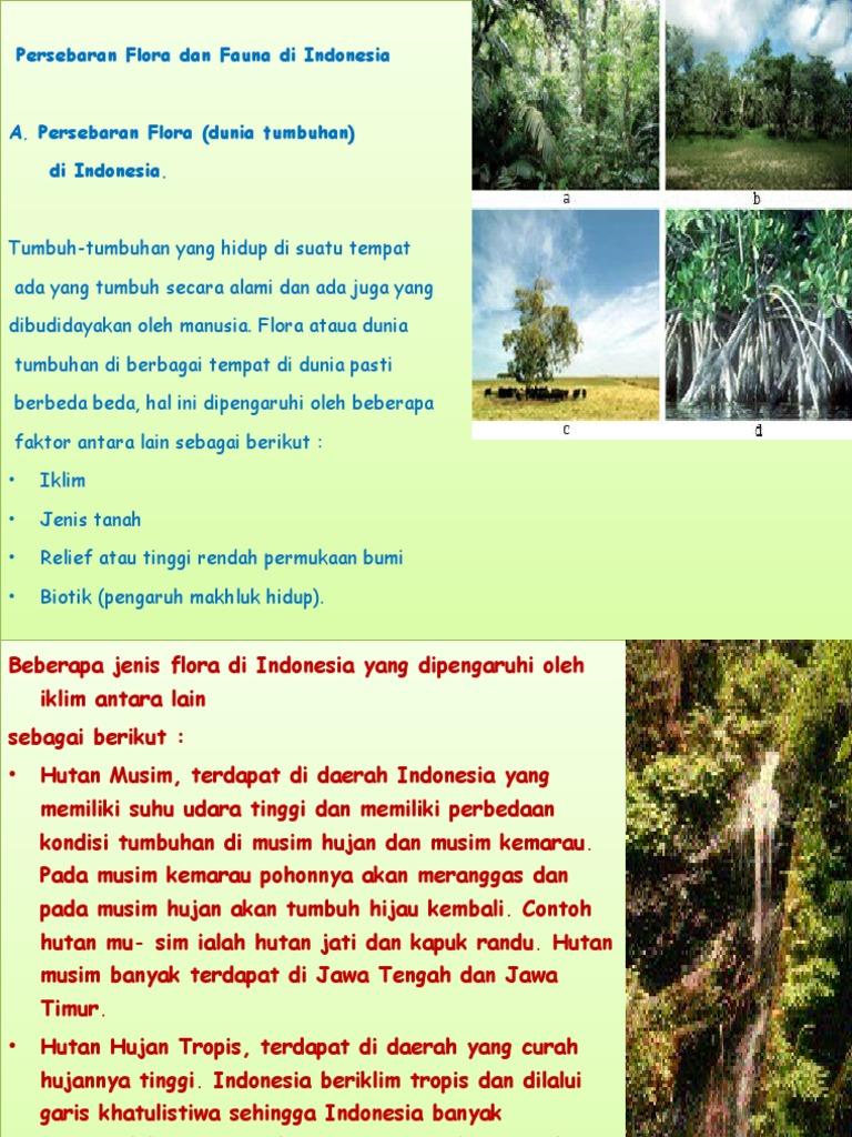 1553670856?v=1 - Jenis Jenis Flora Dan Fauna