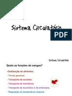 Sistema circulatório, hematopoiético e linfático.
