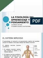 La fisiología del aprendizaje y el pensamiento.pptx