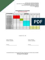 Formato 5.Cronograma de Actividades