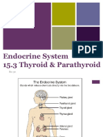 5-15 3 thyroid parathyroid