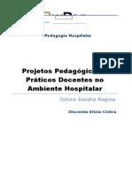 Projetos Pedagógicos e Práticos Docentes no Ambiente Hospitalar