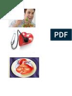 Gambar Jantung Leaflet