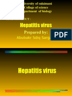 hepatitisvirus