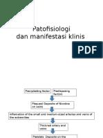 Buerger Disease Patofisiologi Manifestasi Klinis