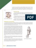 libro_mecanica 19.pdf