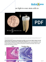 2014 05 Coax Stem Cells Regrow Teeth