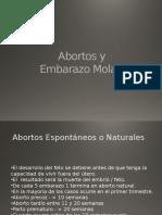 abortos y embarazo molar