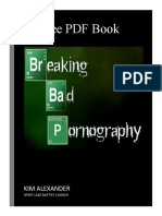 Breaking Bad – Pornography
