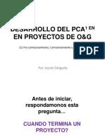 Guia Para El Desarrollo de Las de Pca-For Web