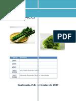 HACCP plan HACCP tallito de apio