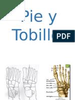 Tecnicas-evaluativas -Tobillo y Pie -Sistema Esqueletico