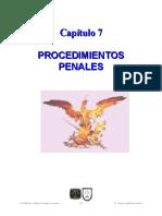 07 PROCEDIMIENTOS PENALES