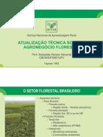 Setor Florestal e Suas Commodities