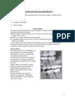 Anatomía Del Sistema de Conductos Radiculares