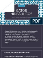Exposicion Gatos Hidráulicos