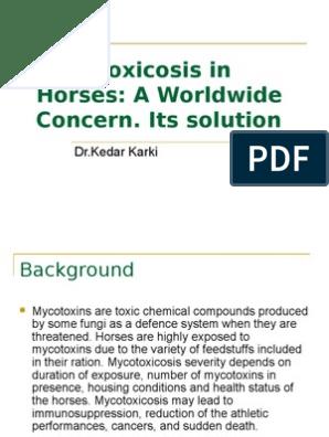Mycotoxicosis in Horses | Mycotoxin | Mold