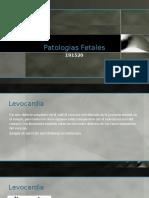 patologias fetales 3