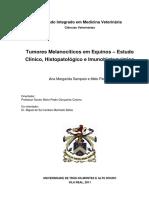 Tumores melanocíticos em equinos – estudo clínico, histopatológico e imunohistoquímico