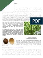 Manual de Artesania en Totumo y Madera
