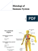 Histology of the Immune System 2010