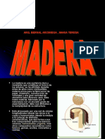 EXPO MADERAS2222222222 (2)