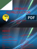 CONFERENCIA APARATO REPRODUCTOR