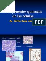 Clase 4 Componentes Quimicos de Las Celulas