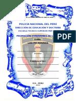 LAS PICADURAS.doc