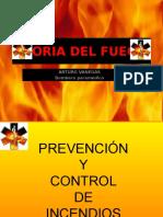 Teoria Del Fuego1