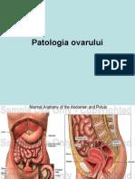 Patologia Ovarului Si Pub