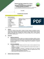 SILABOS-2016-1-RNR+501.doc
