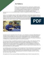 Clinica UOB Palma De Mallorca