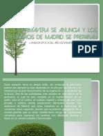Jardineros de Madrid