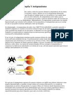 Miopía, Hipermetropía Y Astigmatismo