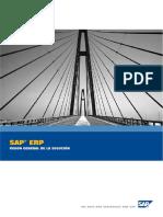 SAP ERP - Overview