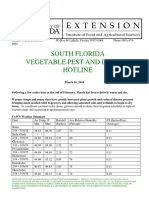 South Florida Vegetable Pest and Disease Hotline for March 16, 2016