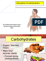 Digestion and Absorption of Carbohydrate Lecture for 1st yr MBBS by Dr Waseem