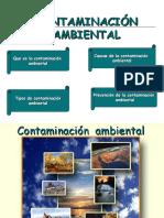 contaminacion(0)