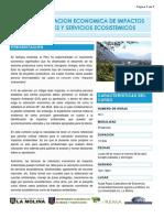 Curso Valoracion Economica de Impactos Ambientales y Servicios Ecosistemicos
