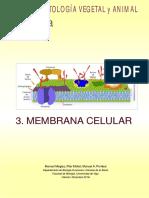 atlas-celula-03-membrana-celular(1).pdf