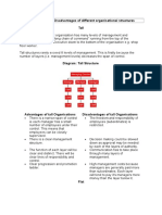 Organisational Structures Advantages and Disadvantages